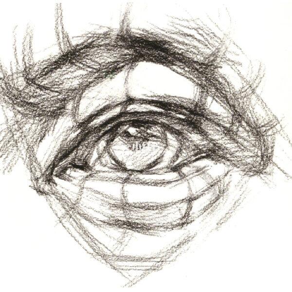 素描眼睛的画法步骤,透视,理论 眼部构造 眼眶是指眼的内部结构 眼球是眼睛的主体 绘画 文化娱乐 小红书图片