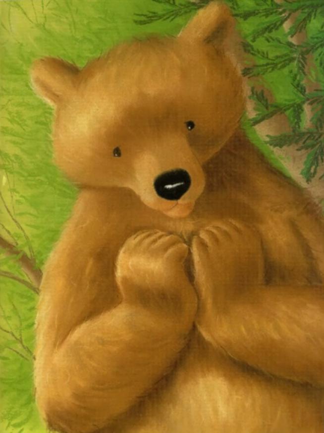 适合给快睡觉的宝宝读的儿童绘本,大棕熊的秘密好温暖