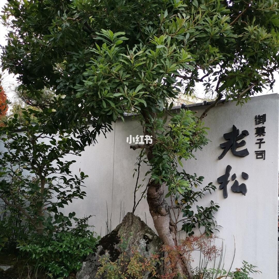 老松 京都